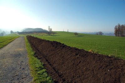 trench composting across field