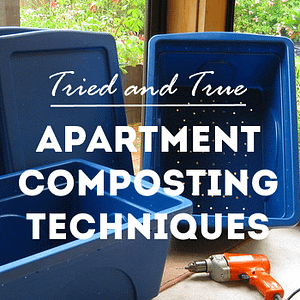 tried and true apartment composting techniques