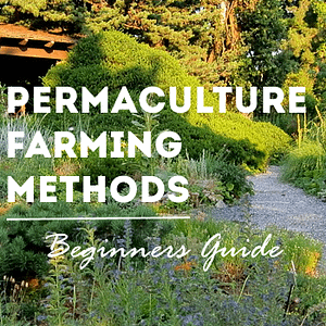 permaculture farming methods