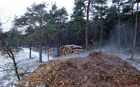 heat rising from composting wood chip pile in the winter