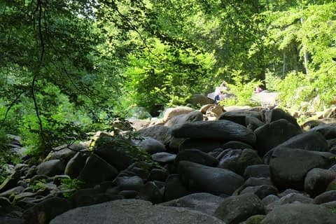 smoothed boulders by ancient riverbed