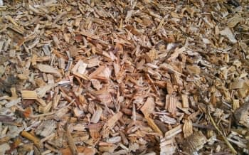Woodchips used in composting for brown matter