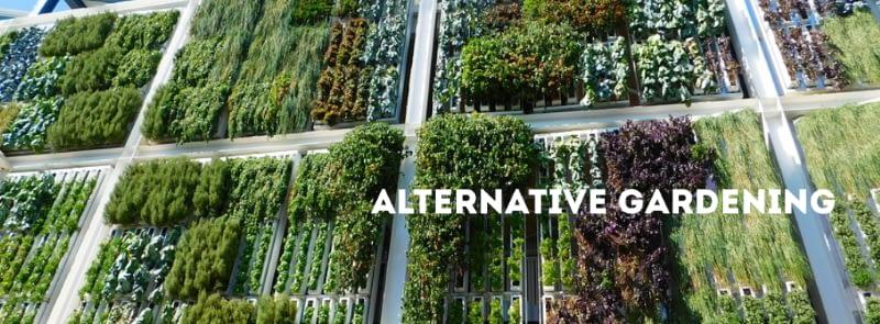 alternative gardening vertical garden graphic