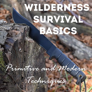 wilderness survival basics: primitive and modern techniques