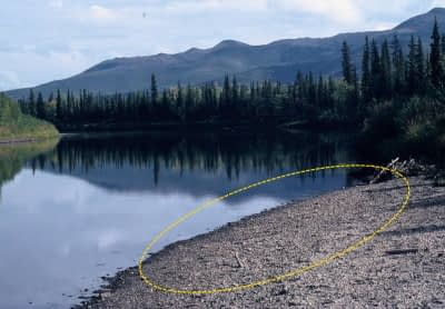 gravel bar on inner bend of river