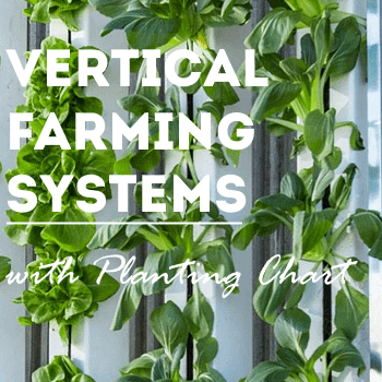 vertical-farming-systems