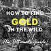 how to find gold in the wild graphic