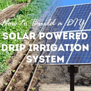 how to build a diy solar powered drip irrigation system