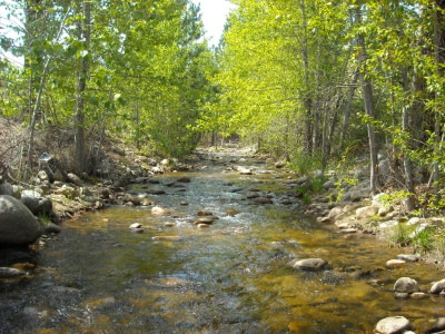 year around flowing stream for off grid water